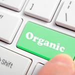 ¿Cuál es la diferencia entre Resultados de Búsqueda Pagos y Orgánicos?